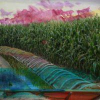 Irrigation tubs